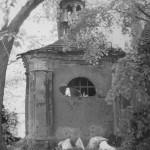 kaple_1988