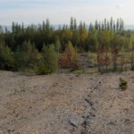 IMG_8739_panorama