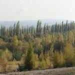 IMG_8772_panorama