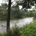 IMG_6625_panorama