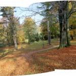 IMG_8511_panorama2