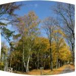 IMG_8553_panorama