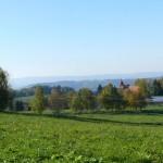 P1250940_panorama