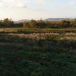 P1260242_panorama