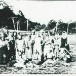 Senoseč u Libavského potoka. R. 1944