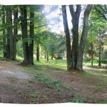 IMG_7011_panorama